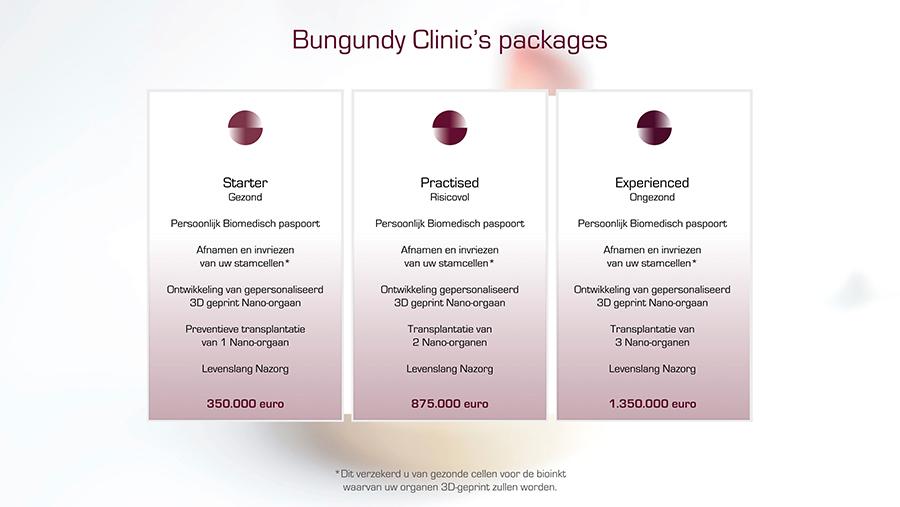 Burgundy_simone_van_oosterhout03b