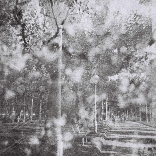 Lomography-Diana-F+_Simone-van-Oosterhout_08
