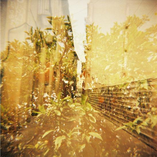 Lomography-Diana-F+_Simone-van-Oosterhout_10